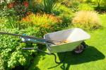Winterdienst, Gartenbau, Leistungen